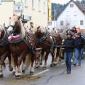 Pferdemarktsumzug Strubelmühle