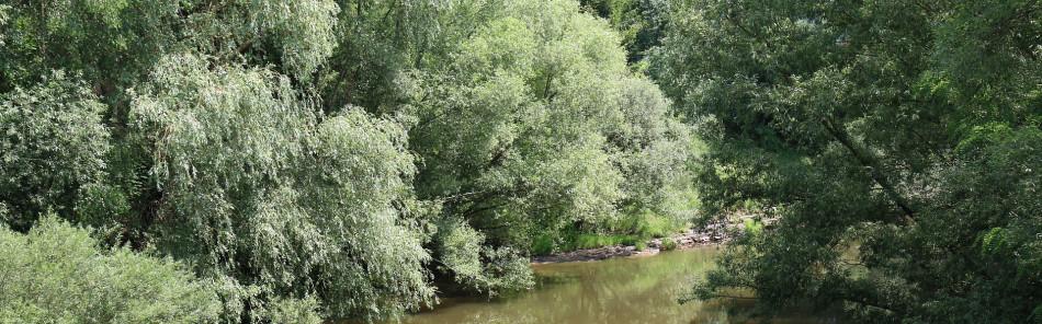 Blick von der Kocherbrücke bei Kleinaltdorf