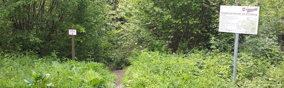 Single-Trail - Kreuzung mit dem Kirchbergweg