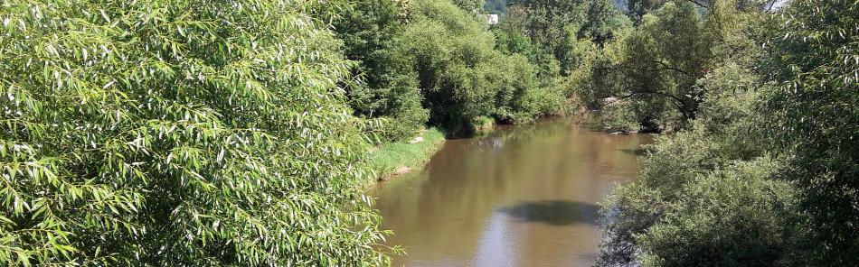 Blick von der Kocherbrücke in Gaildorf auf den Fluss mit Bäumen auf beiden Ufern
